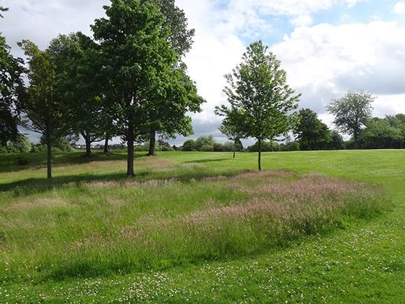 Parkland landscape in Yoker, Glasgow